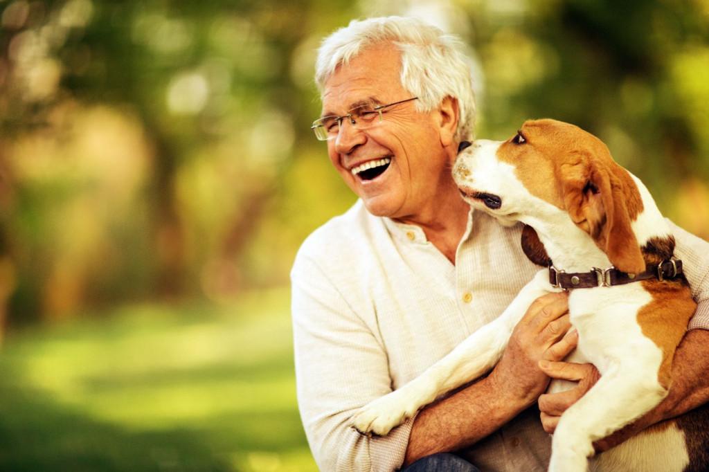 Польза домашних животных для пожилых людей